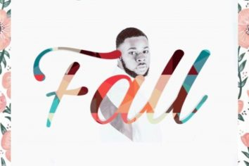 Audio: Fall (Davido cover) by Stainbee