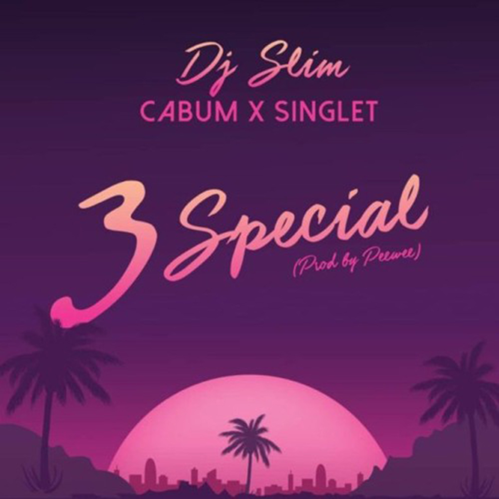 3 Special by DJ Slim feat. Cabum & Singlet
