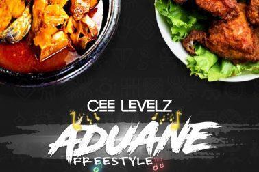 Audio: Aduane (Freestyle) by Cee Levelz